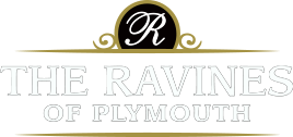 The Ravines of Plymouth